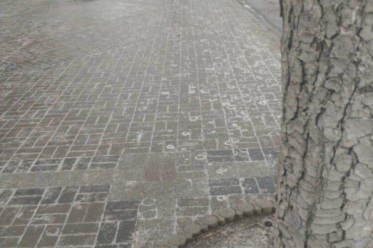 Недільного ранку в Луцьку спостерігається грандіозний сракопад: місто перетворилося на суцільну ковзанку (Фото, відео)