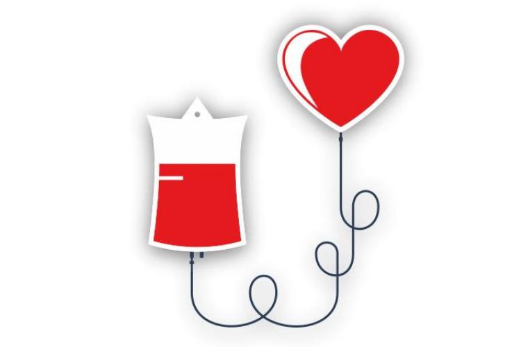 Сьогодні у Локачах можна здати кров