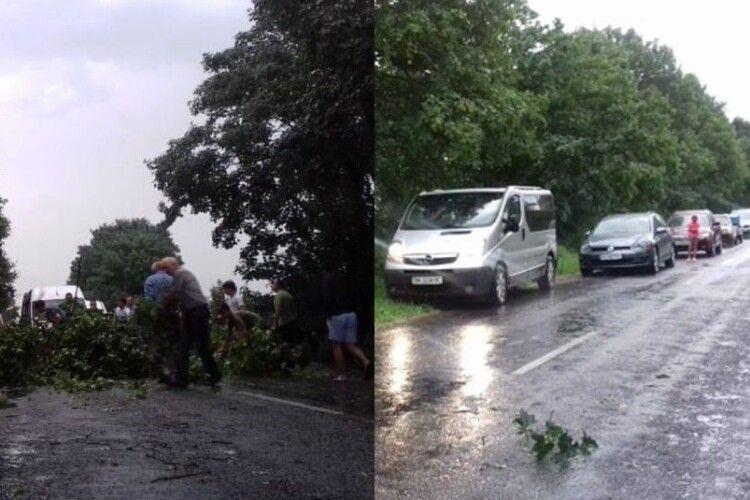 Через негоду на Волині дерева перегородили дорогу