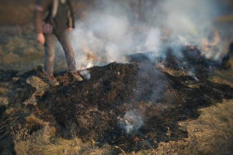 Оштрафували чоловіка, через якого під Луцьком вигоріло 10 соток сухої трави