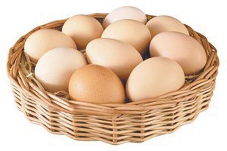 Визначаємо свіжість курячих яєць