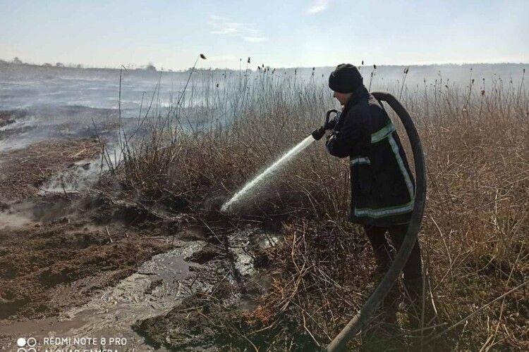 За тиждень на Волині загасили 41 пожежу в екосистемах
