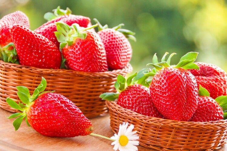 В Ізраїлі виростили найважчу в світі полуницю