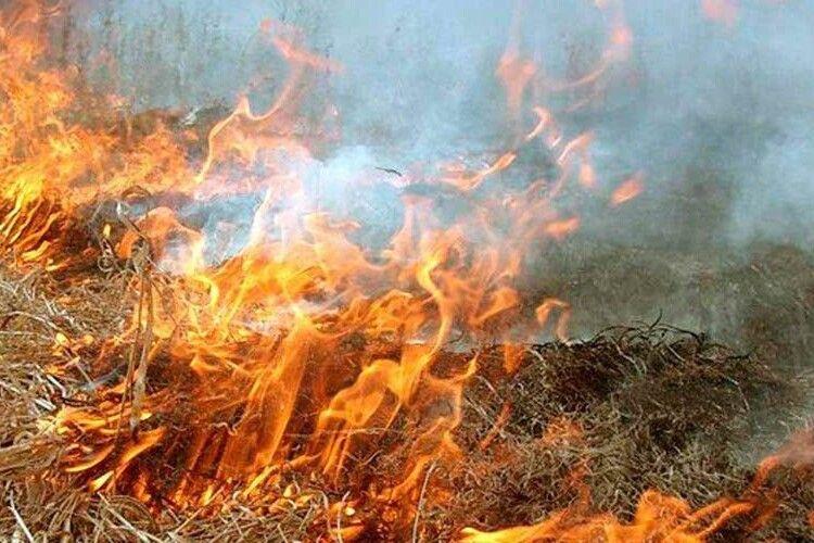 На Волині оштрафували 81-річного діда, який разом із травою ледь не спалив хліви сусідам