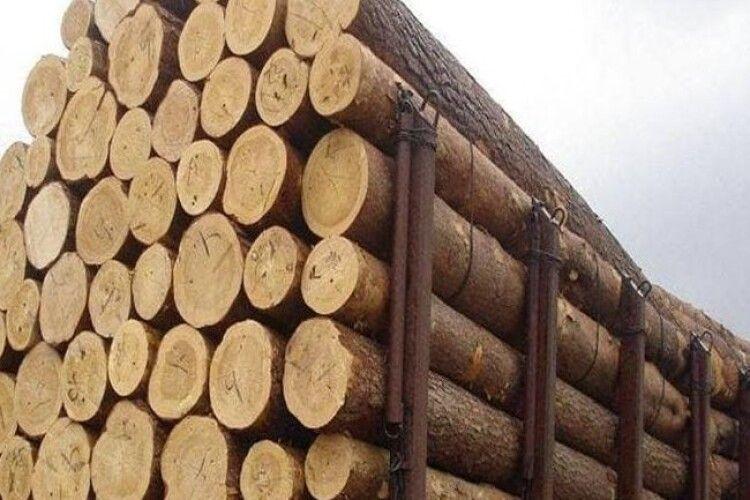 На Волині покарали підприємця, який хотів контрабандою вивезти з України деревину акації