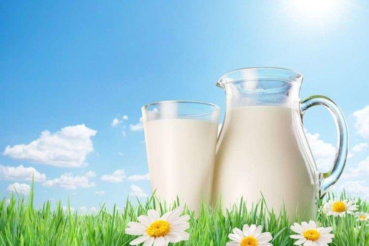 Молочні монополісти позбавляють волинян заробітку