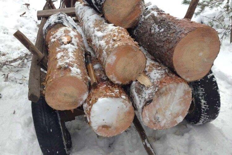 50-річний житель Рівненщини стріляв з рушниці по возі з краденою деревиною
