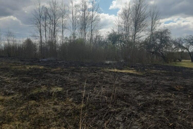 На Волині офіцер громади знайшов жінку, яка підпалила сухостій