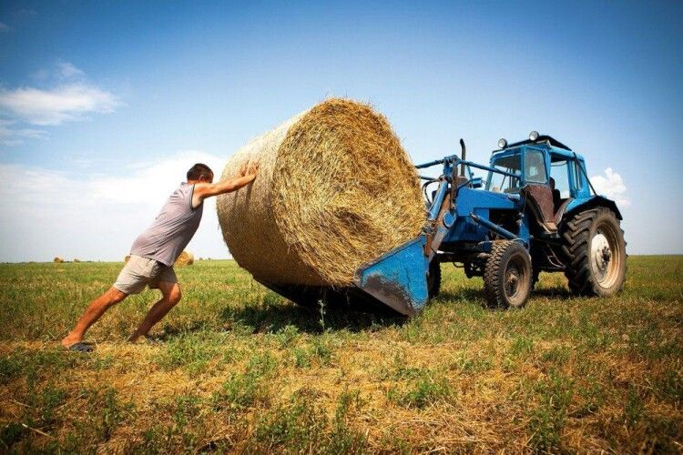 Гончаренко: «Відкрити ринок землі можна тоді, коли селянин зможе її не тільки продавати, а й купувати»