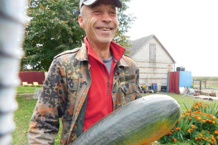На Горохівщині вирощують 60-кілограмові кабачки з американського насіння