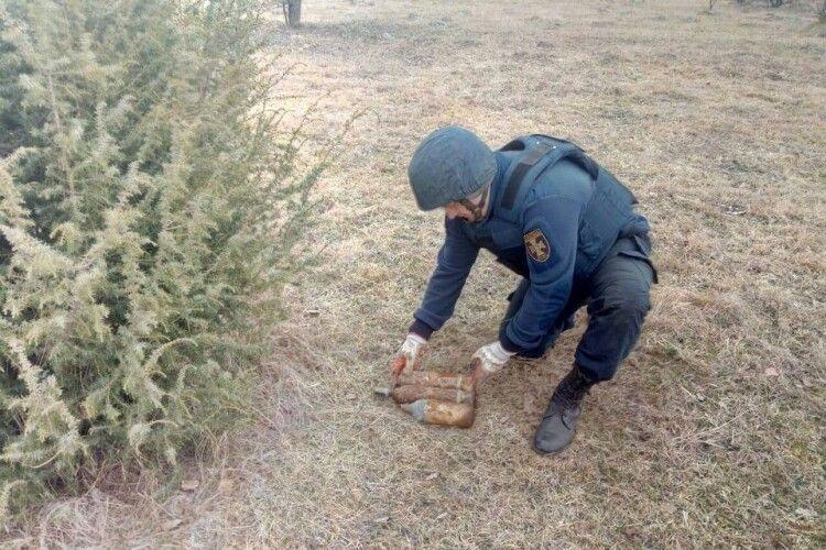 У лісі під час збирання грибів волиняни знайшли 11 боєприпасів часів минулої війни (Фото)