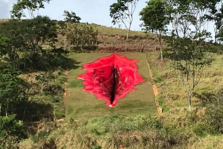 Бразильців збурила скульптура вульви у ботанічному саду (Фото)
