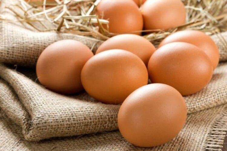 Протягом місяця яйця в Україні здорожчали на 18%