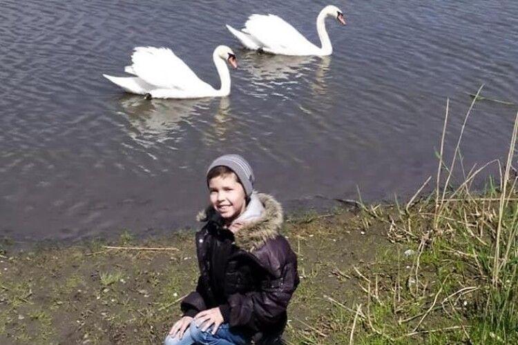 Десятирічний волинянин потоваришував із лебедями