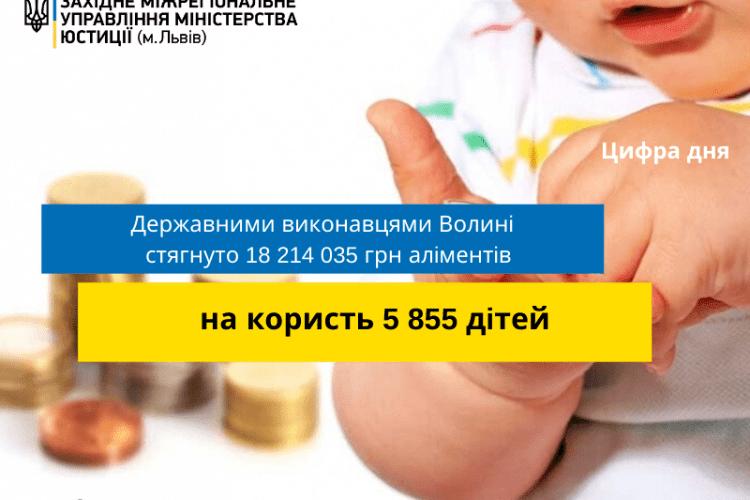 Державні виконавці Волині «вибили» понад 12 млн грн аліментів із нерадивих батьків