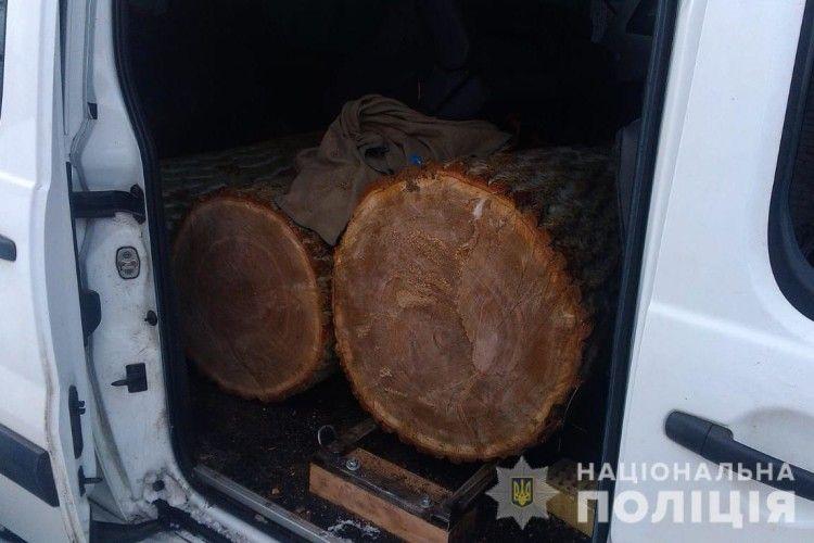 Злапали цуманчанина, який віз чотири дубових колоди (фото)