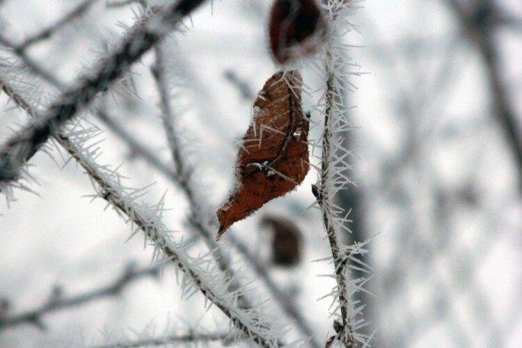 Коли температура в Україні вдень знизиться до нуля