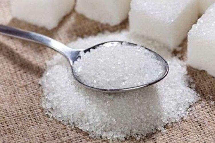 Аби лиш вирощували: луцький цукровий завод обіцяє закупляти буряк у селян без посередників