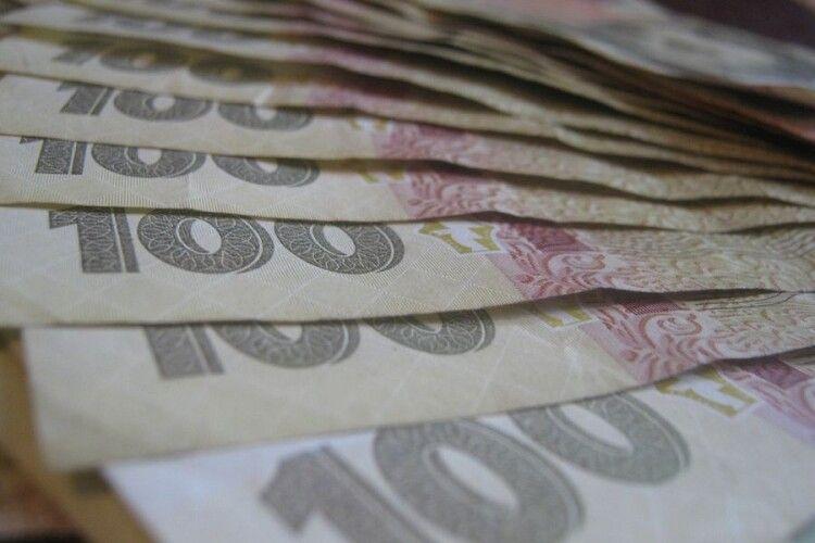 Дружина волинського «слуги народу» купила авто за 1,4 млн грн