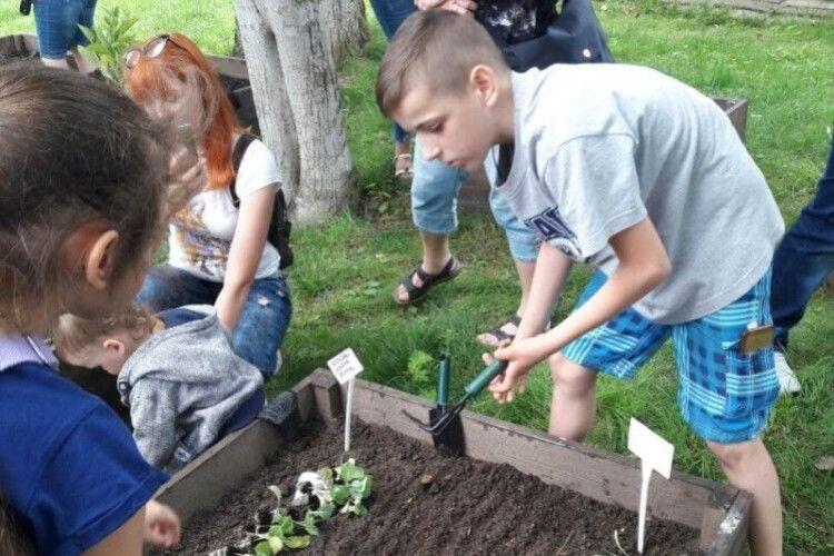 Особливі діти з Луцька висаджували овочеві культури на «міському городі»