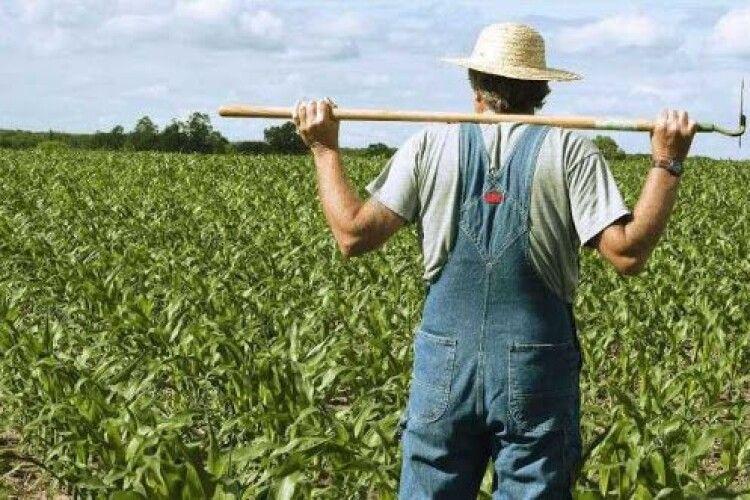 Шмигаль і компанія хочуть вдвічі підняти податок для сільгоспвиробників