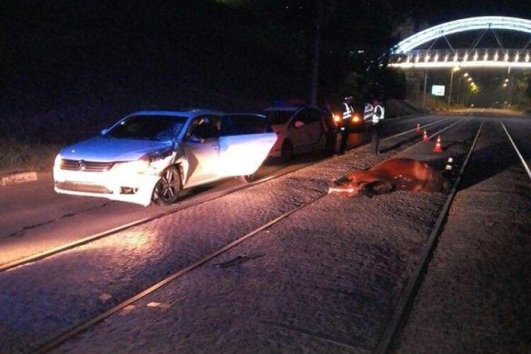 Машина збила вершницю: кінь загинув