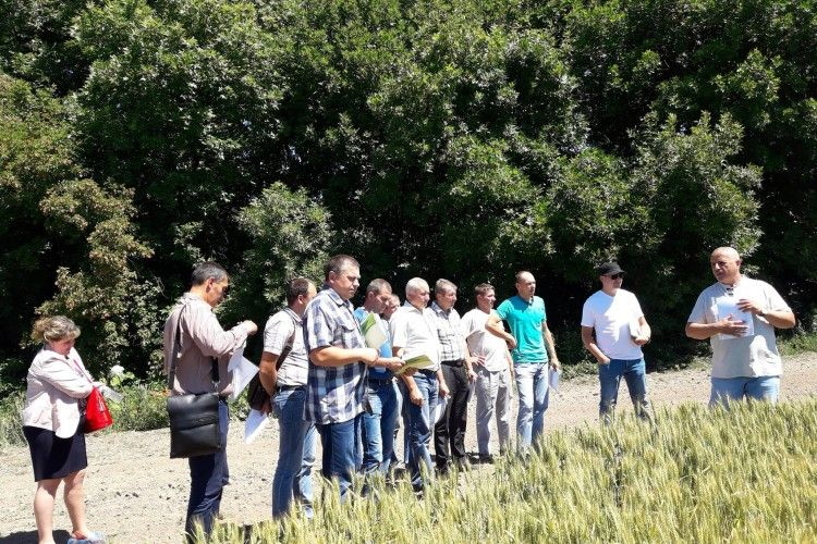 На Волині створюється перший сільськогосподарський обслуговуючий кооператив виробників картоплі