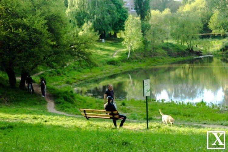 Скоро викосять траву: коли в Луцьку почнуть оновлювати парк імені 900-річчя