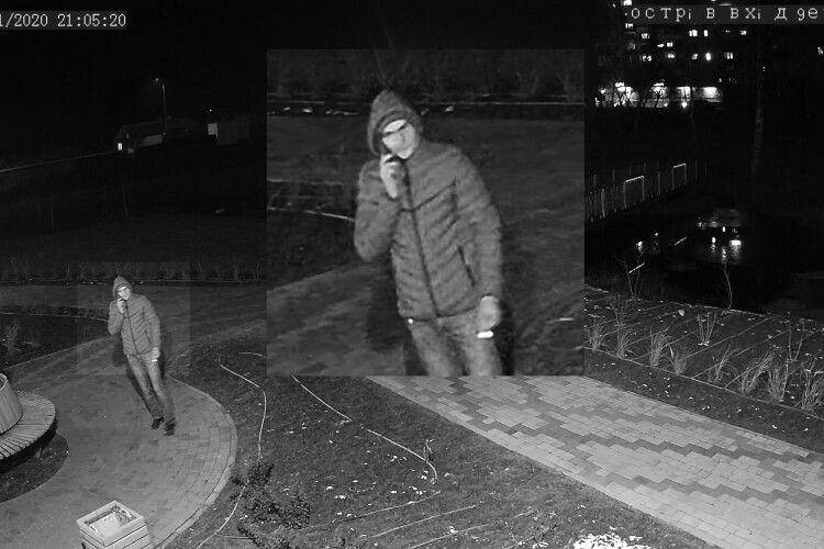 У Володимирі молодики понищили освітлення в парку: їх записали камери (Фото)