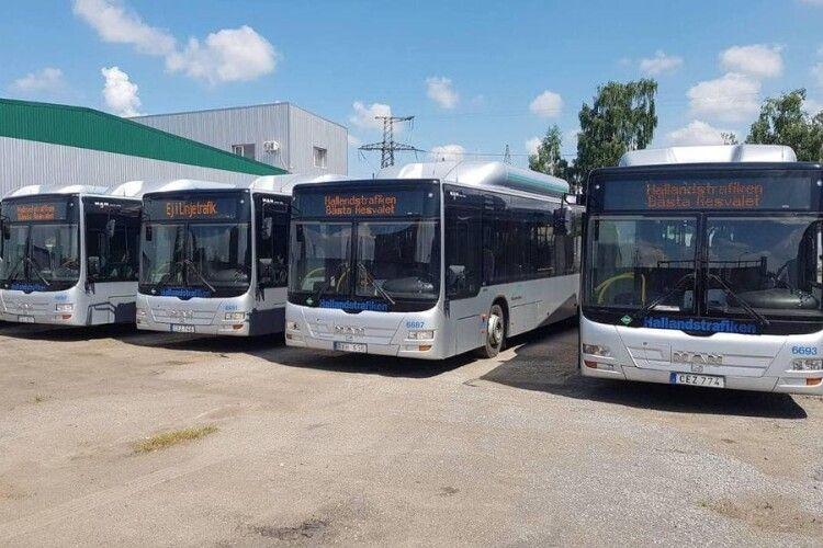 У Луцьку з'явиться ще 7 нових автобусів