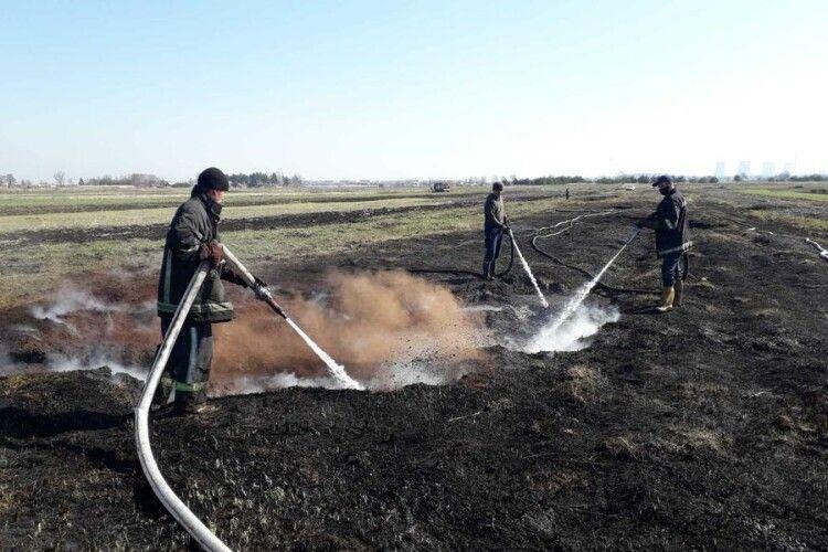 За минулі вихідні на Волині виникло 22 пожежі в екосистемах