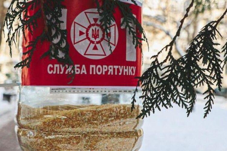 ДСНС України розгорнула спецоперацію із порятунку синичок (Фото)