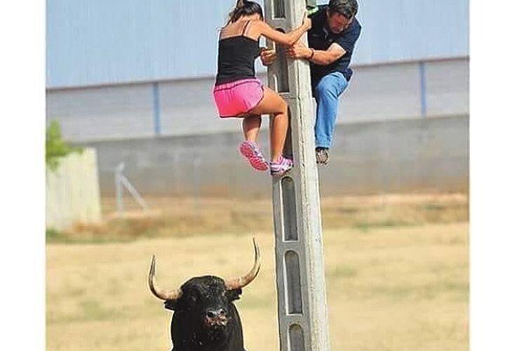 Конкурс «Стоп-Кадр»: «Хто скоріш зі стовпа зіскочить, той бика за роги й вхопить!»