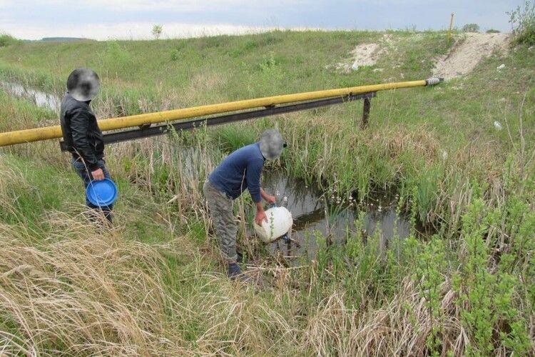 У волинському селі двох дядьків примусили випустити у воду спійманих ними двох в'юнів та двох щук (Фото)