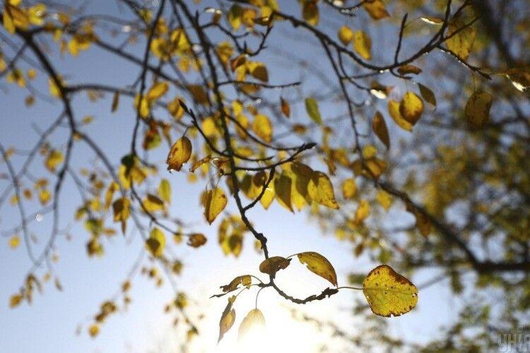 Якої погоди очікувати в перші дні жовтня