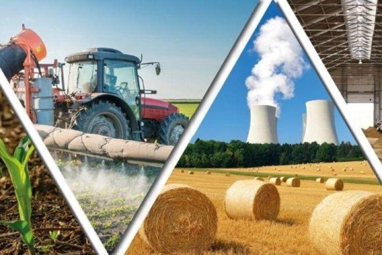 Волинські аграрії у 2020-ому не зменшили обсягів виробництва