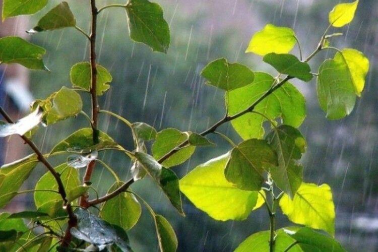 Погода на неділю, 28 червня: короткочасний дощ, гроза, місцями град