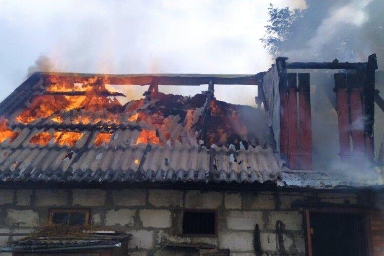 У Володимирі-Волинському рятувальники приборкували червоного півня