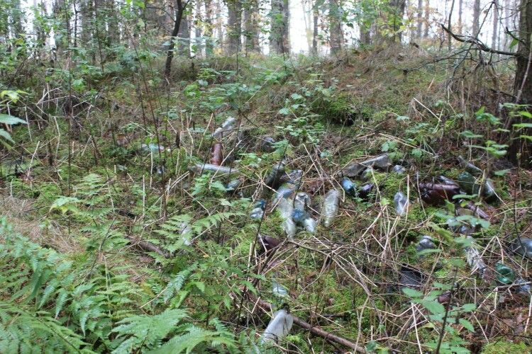 Волиняни засмітили побутовими відходами Національний природний парк (Фото)
