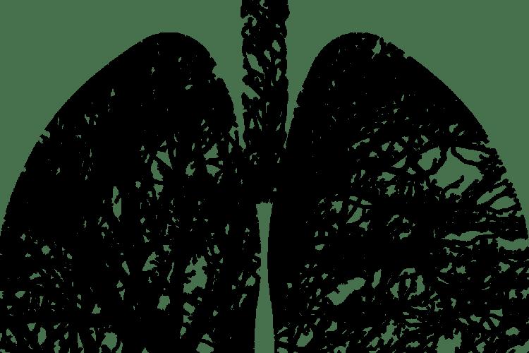 Лікарка розповіла, чи відновлюються легені після COVID-19