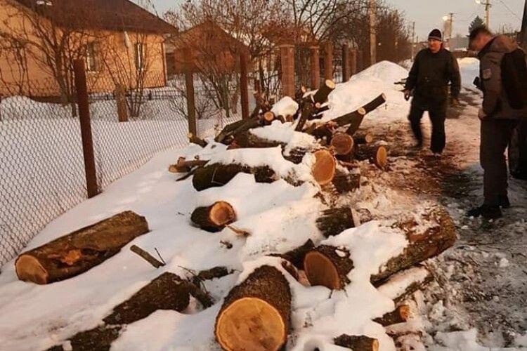 У Луцьку оштрафують чоловіка, який скинув дрова на узбіччі