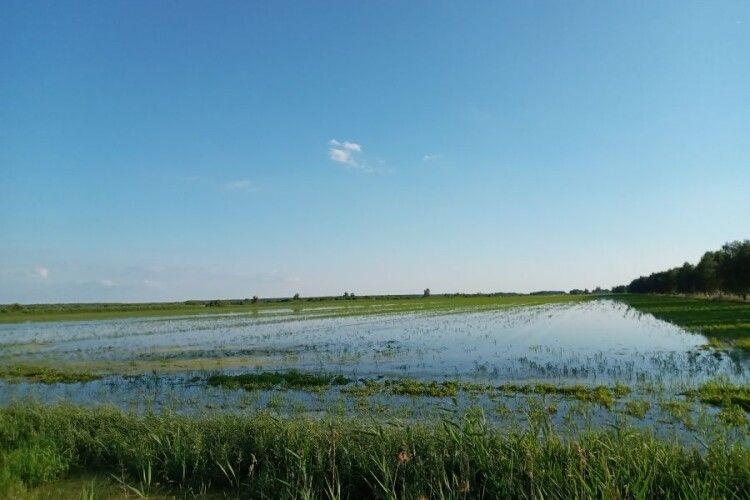 Наслідки стихії: на Ратнівщині за добу викачали 290 тисяч м.куб. води