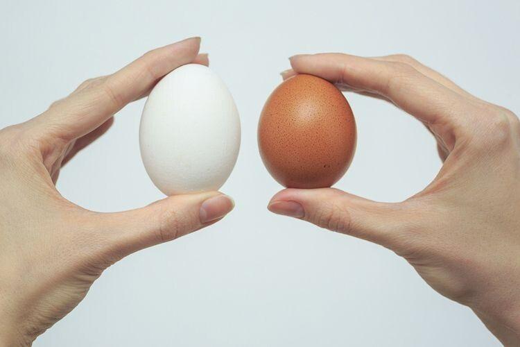 Колір шкаралупи яйця насмак невпливає