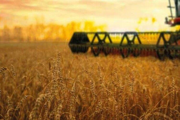 В аграрному районі краю врожайність— 70–77центнерів згектара