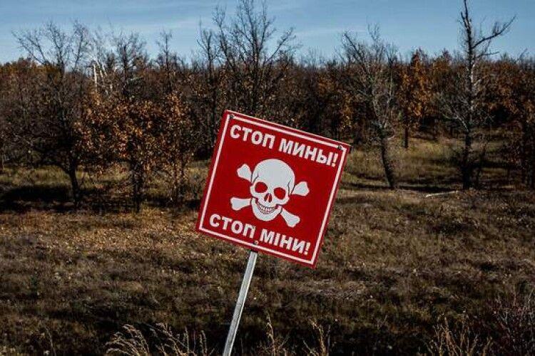 Шукали корову: на окупованій Луганщині підірвалися жінка з дитиною