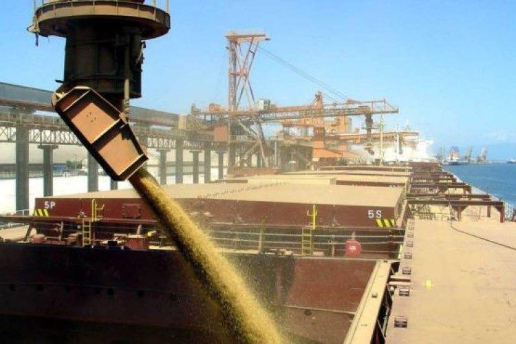 Картинки по запросу порти зерно