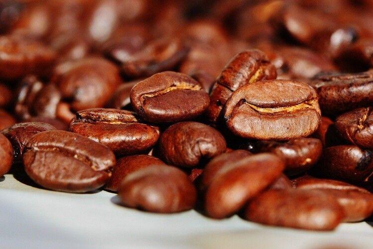 Популярна акторка показала, як ніжилася голяка у кавових зернах (Фото 18+)