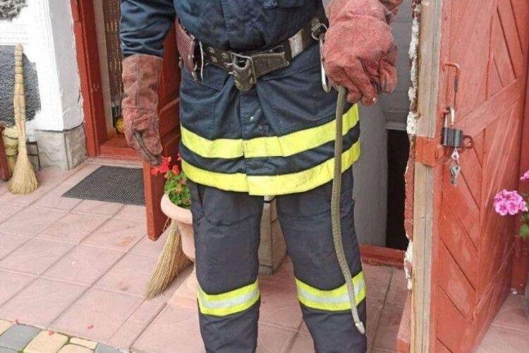 У Володимирі-Волинському викликали рятувальників, бо  в будинку... повзав вуж