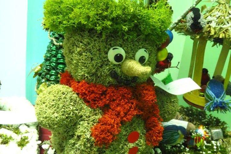 Нацпарк «Цуманська пуща» закликав волинян замість ялинок ставити дідухи та різдвяні «павуки»