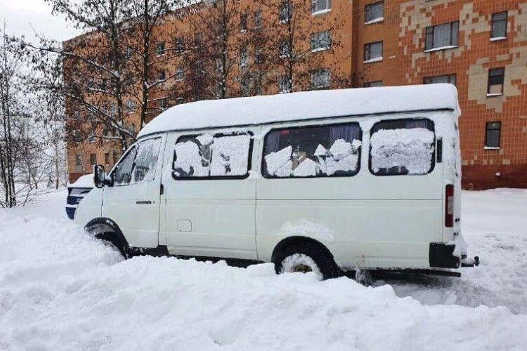 На Рівненщині водій шкільного автобуса сів п'яним за кермо та в'їхав у сніговий замет (Фото)